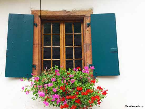 alsace village window flower box