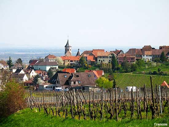 Zellenberg an Alsace village in France