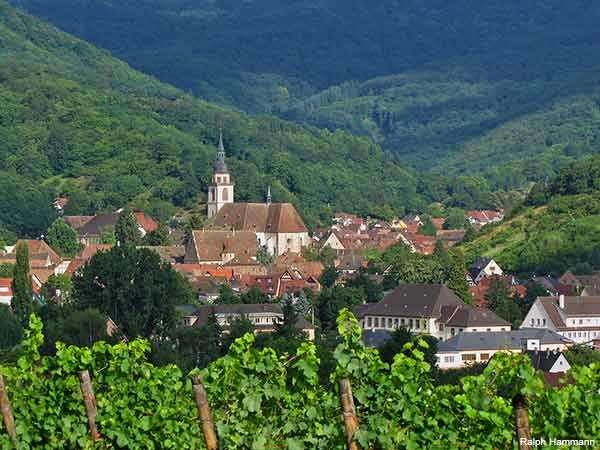 Alsace village in France on the wine road