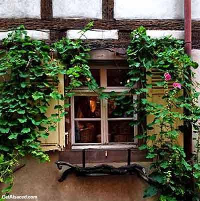 Alsace village window
